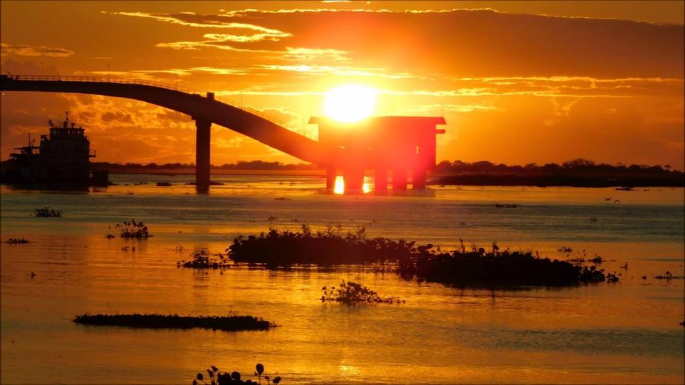Governo de Mato Grosso do Sul sanciona lei que define 12 de novembro como dia do Pantanal Sul-Mato-Grossense